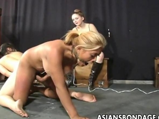 tender escort torments a sinful Asian babe